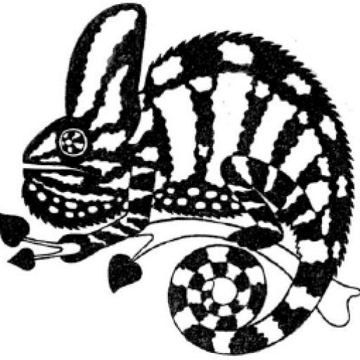 Интернет-магазин chameleons.ru